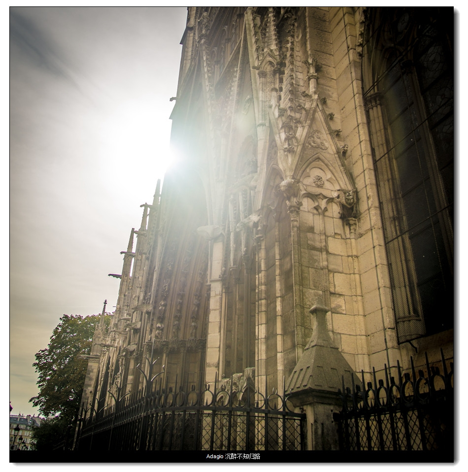 逆光下的巴黎圣母院后墙